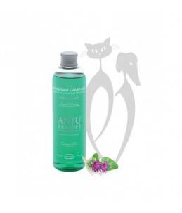 Anju Beauté - Purifiant Camphre 250 ml - Shampoing assainissant déodorant