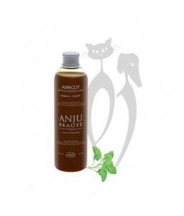 Anju Beauté - Abricot 250 ml - Shampoing spécial crème - abricot - blond