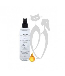 Anju Beauté - Absolu 500 ml - Soin démêlant pro - Spray