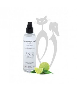 Anju Beauté - Shining Care 150 ml - Soin brillance - Spray