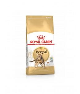 Royal Canin Bengal - Sac 400 g