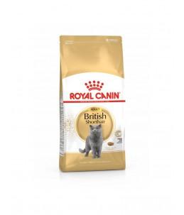 Royal Canin British Shorthair - Sac 10 kg