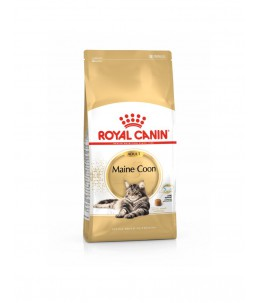 Royal Canin Maine Coon - Sac 10 kg