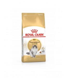 Royal Canin Norwegian - Sac 10 kg