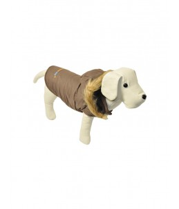 "Manteau, brun ""Fashion Dog"", avec capuchon"